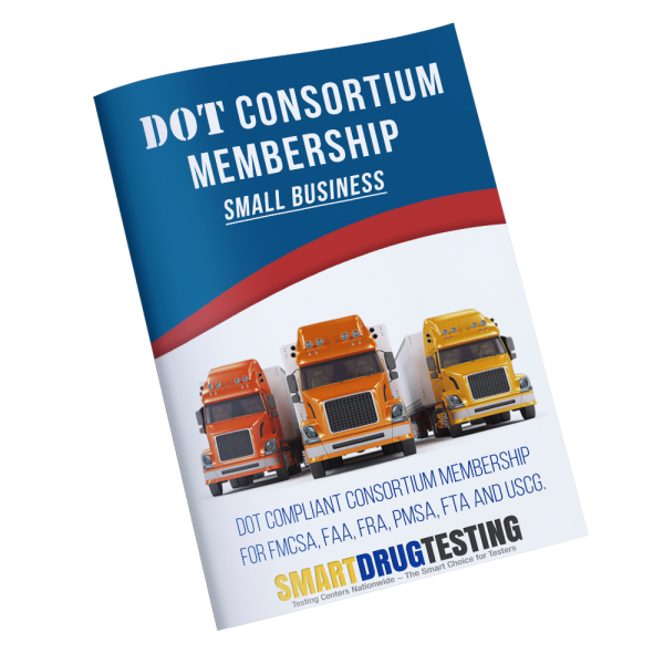 DOT-CONSORTIUM-SMALL-BUSINESS