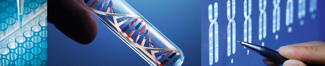DNA-Paternity-Testing